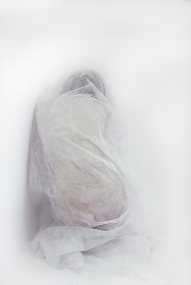 Maria Jankowska, 'Ukrywac' ('To Hide'), 2010. Recent Acquisition by Arts Council of Northern Ireland